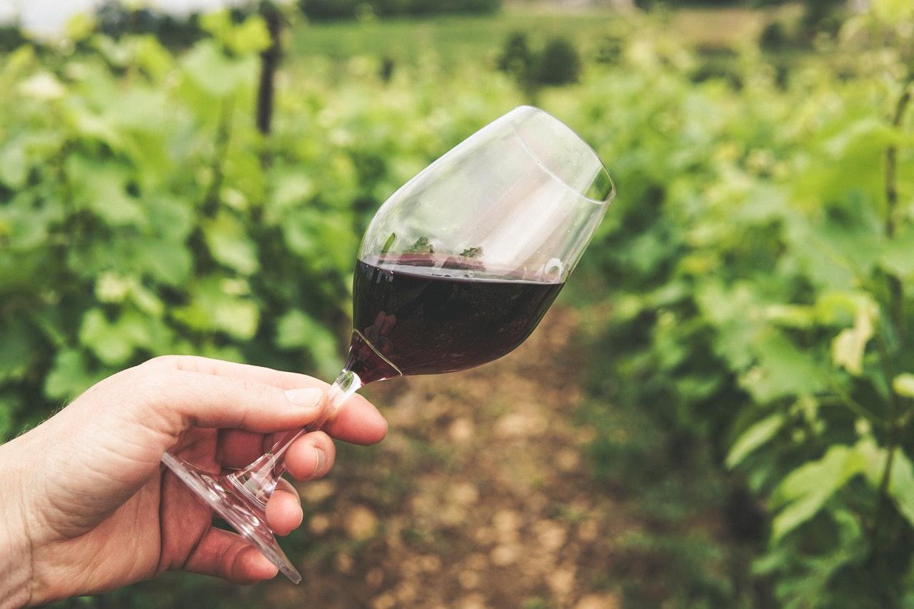 qué regalar a un amante del vino